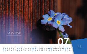 ewico 2017 Desk Calendar - July